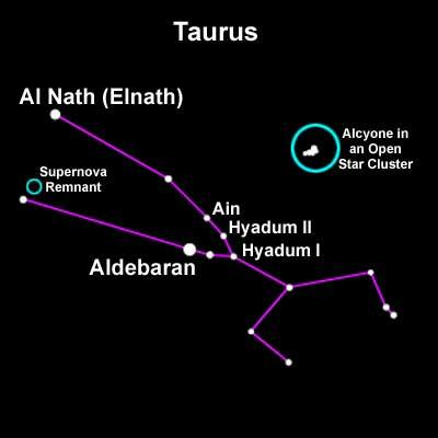 taurus the bull constellation crab nebula - photo #22